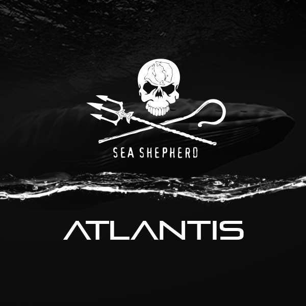 Sea Shepherd und Atlantis